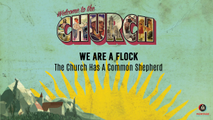 ChurchSeries2-Flock